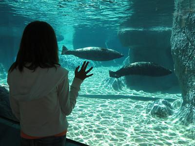 NC Zoo 041714