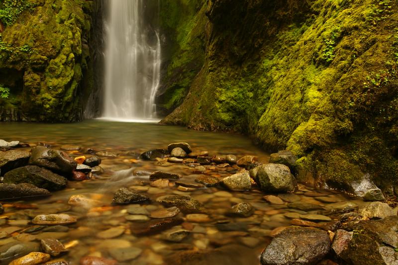 Pinard Falls, Willamette National Forest