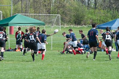 Osprey Rugby