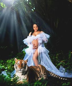 Mahogany's Maternity