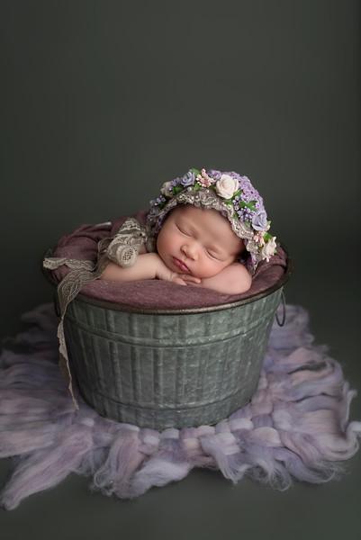 newborn-photographer-theme-3741.jpg