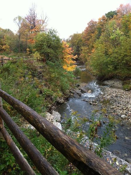 Warden Woods (Gus Harris Trail) Toronto hiking trails