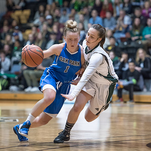 AAAA Girls Provincial Championship Varsity Basketball 2017