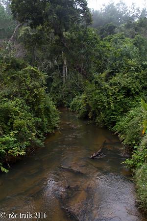 analamazaotra reserve