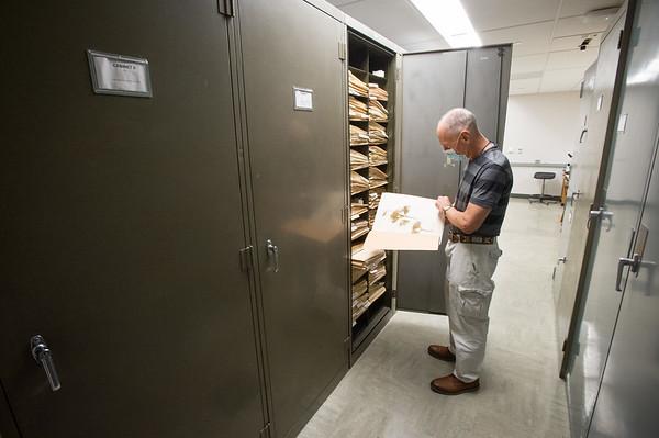1/14/21 BSCene: Eckert Herbarium
