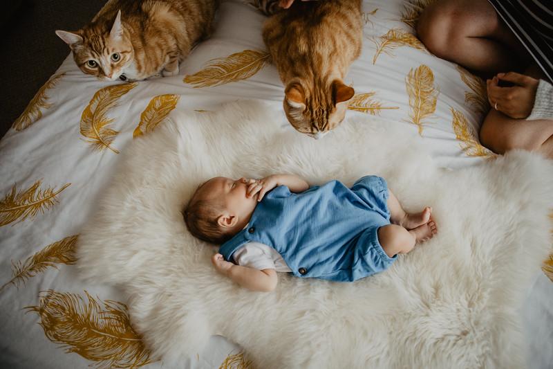 bash-newborn-12.jpg