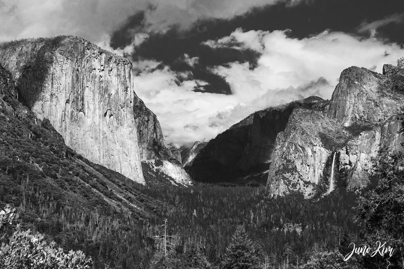 05.2021_Yosemite__DSC7351-Juno Kim-2000.jpg