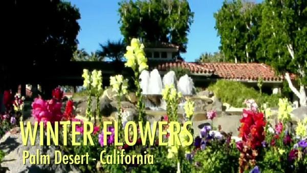 Woodhaven Flowers - Movie