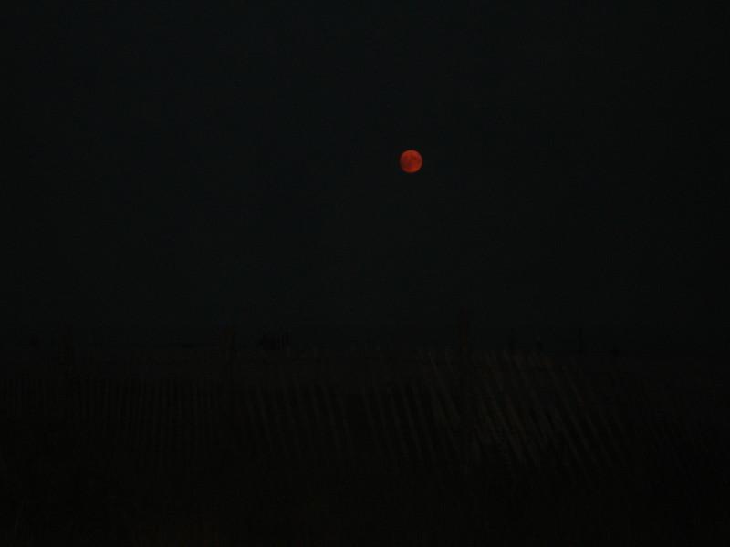 Cape May 1 014.jpg
