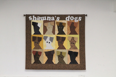 Flyball Seminar at Shawna's Dogs