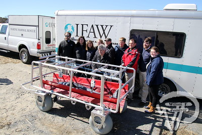IFAW — rescue carrier