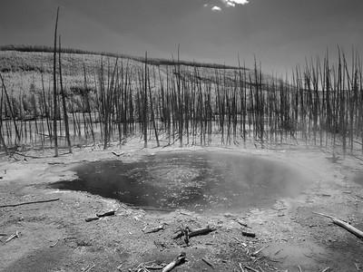 Day 5 Yellowstone IR