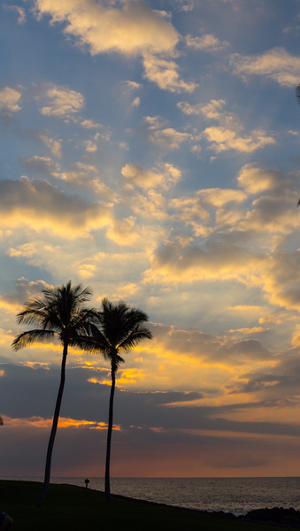 27_Hawaii__MG_0066 copy.jpg
