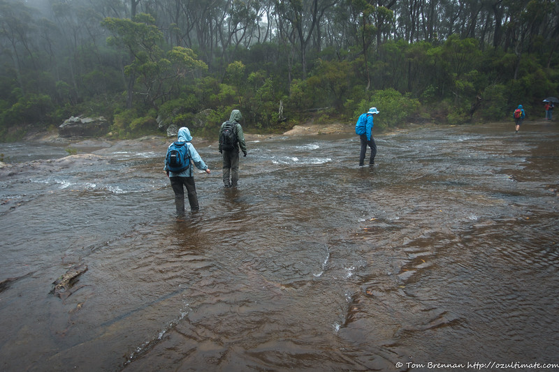 Wet foot crossing of the Kangaroo River above Carrington Falls