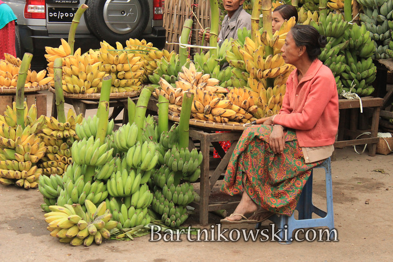 BananasGalore.JPG