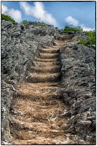 path-.jpg