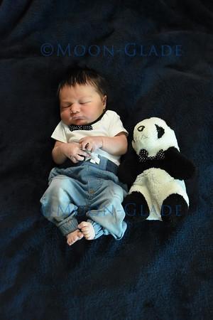 Baby Wyatt