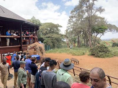 2019-07-21 Nairobi Giraffe Centre