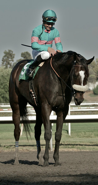 Mike Smith and Zenyatta rest on the track after winning the Ladies' Secret Stakes at Hollywood Park, Oct. 2, 2010.