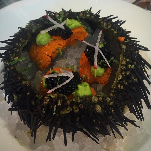 If there's a heaven, it's somewhere where @giuseppetentori pulls sea urchin magically out from a secret place nobody knows about...thank you Chef!!