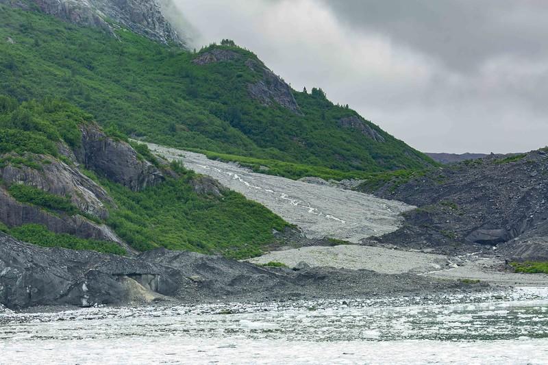 Glacier Bay 28.jpg