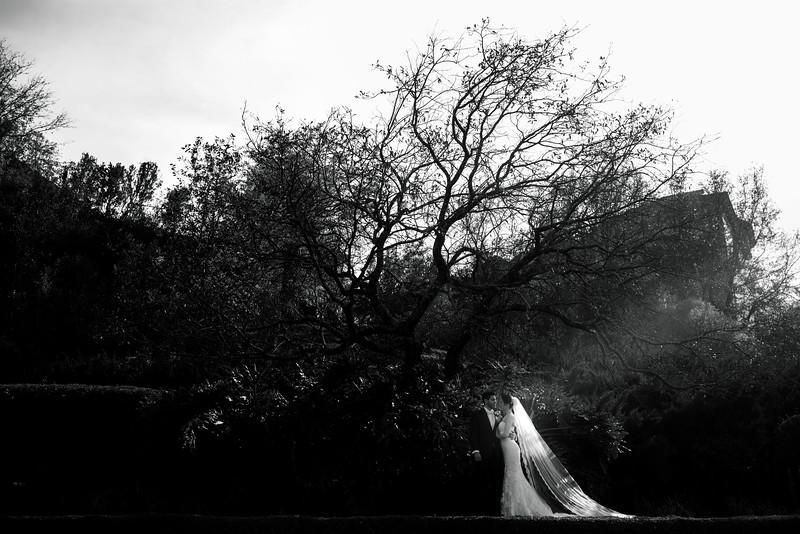 CPASTOR - wedding photography - wedding - S&D