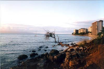 Maui 1997