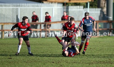 Rugby 16-01-3011