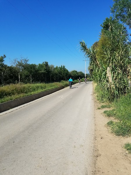 biking on quiet road.jpg