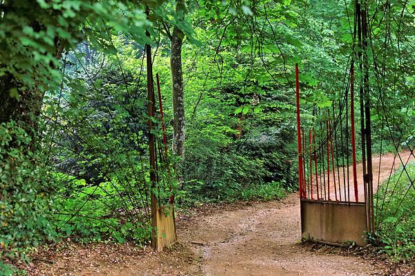 2009 - Jardins de couleur - Festival des Jardins de Chaumont - Chemin du vallon des brumes
