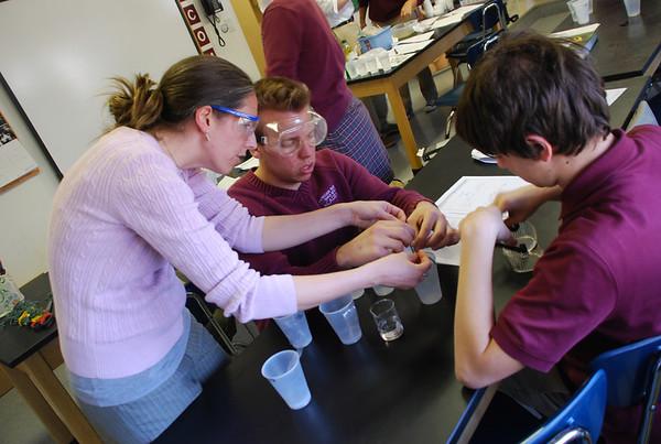 AP Biology: Selective Permeability