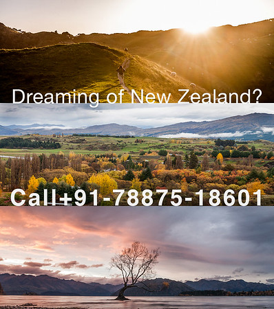 Dreaming of New Zealand