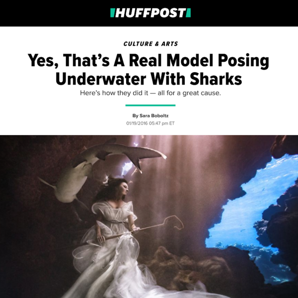 160119_Huffpost_ Sharkshepherd_02.png