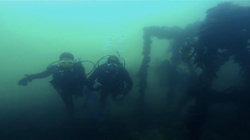 Devon-Underwater-16.jpg