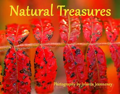 natural-treasures-2012