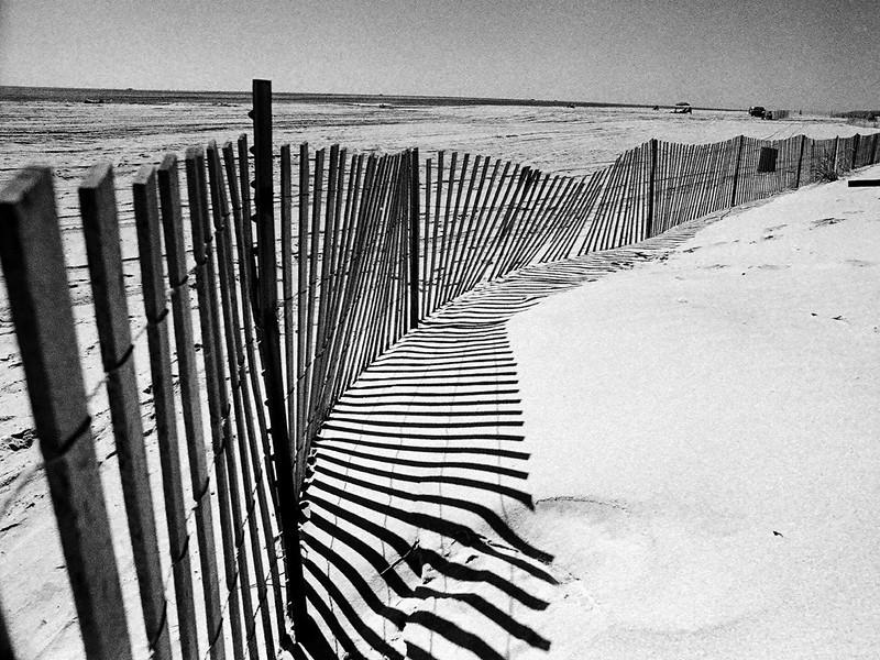 Beach fence .jpg