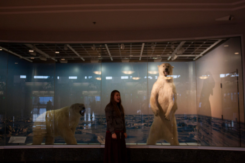 November 7, 2012. Day 306. I've been a litttttle lazy about my 365 for the past few days, so I'm hoping to catch up posting soon. But anyway, here's a blurry picture, of me and a bunch of polar bears yawning at the airport.  Ted Stevens International Airport, Anchorage, Alaska