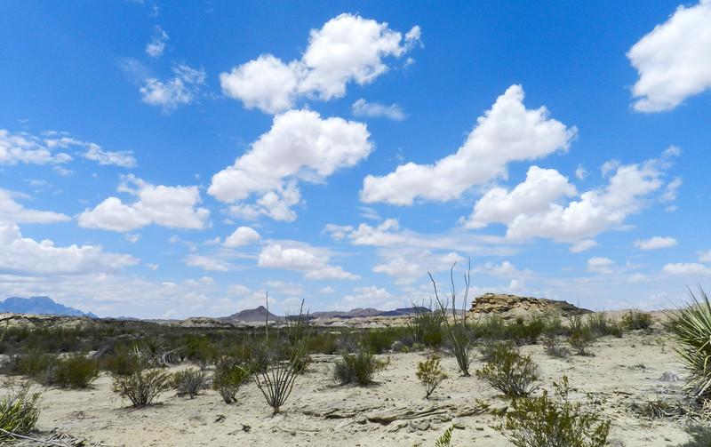 BBNP across the desert view2.jpg