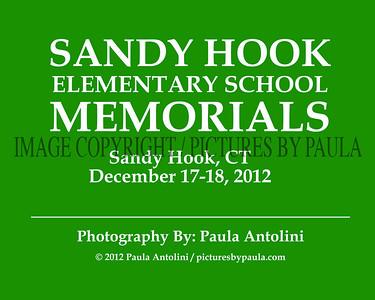 SANDY HOOK ELEMENTARY SCHOOL MEMORIALS ~ Sandy Hook, CT ~ December 17-18, 2012