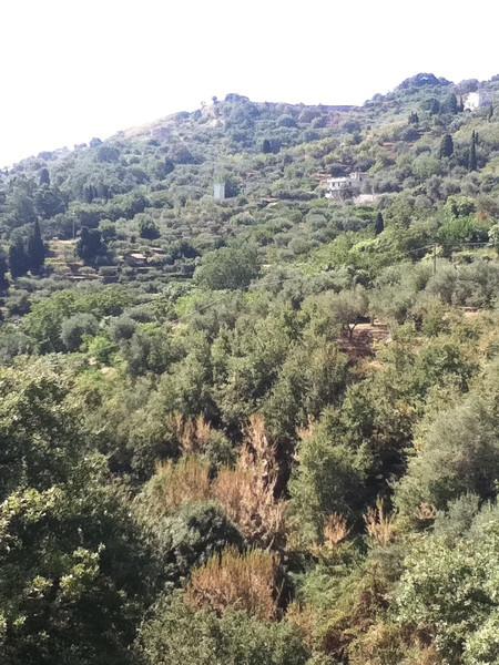 20110820-Ginka-Sicily-20110820--IMG_1563--0762.jpg