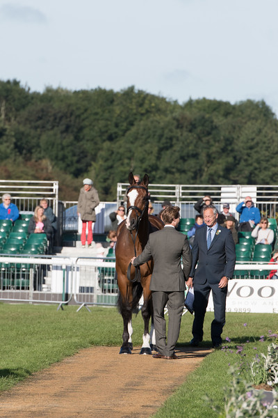 Burghley 2016 Trot up and Presentation
