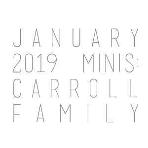 January 2019 Minis: Carroll Family