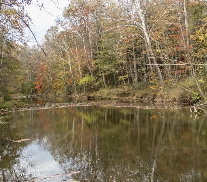river color 110517-1.jpg