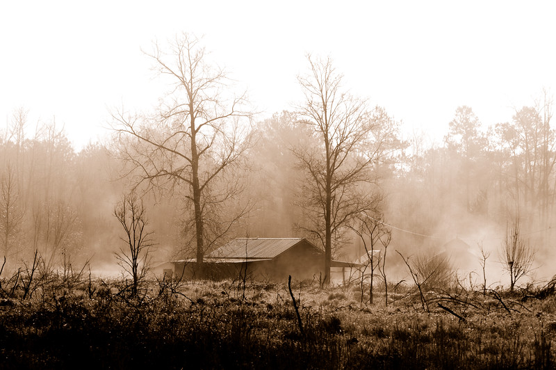The weather today was beautiful, with clear blue skies and warmer temperatures, but the morning brought fog and you know how much I love fog.  I couldn't really capture the feel of it in color, so I had to go with the sepia.  Maybe we'll have blue skies again tomorrow.<br /> <br /> Wagarville, Alabama