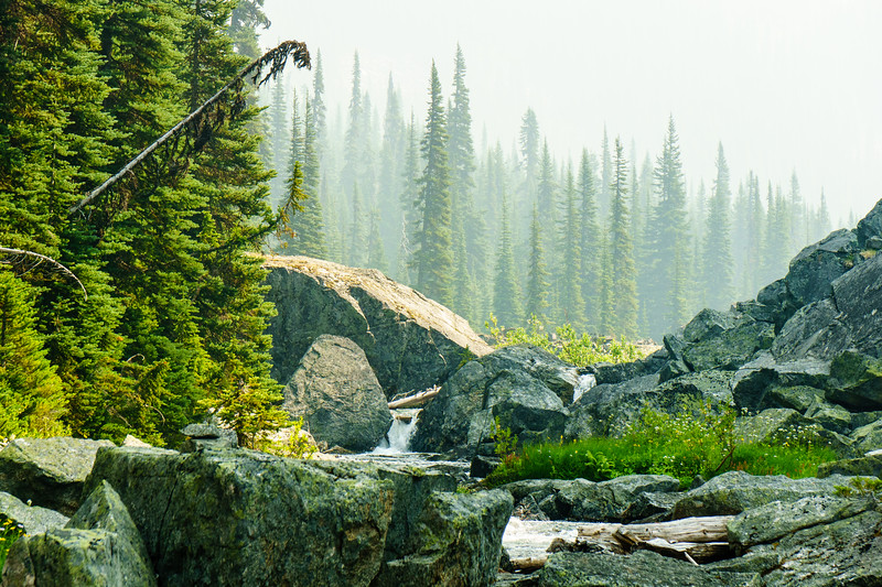 Hazy layers above a mountain stream near the Lizzie Lake Cabin near Pemberton, British Columbia.