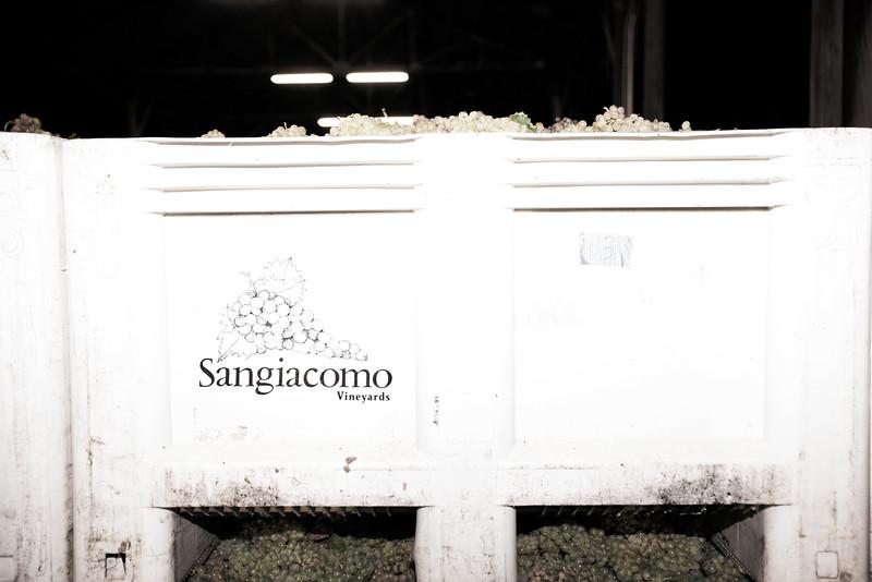 Sangiacomo14-174.jpg