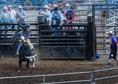 Bull Riding 2015