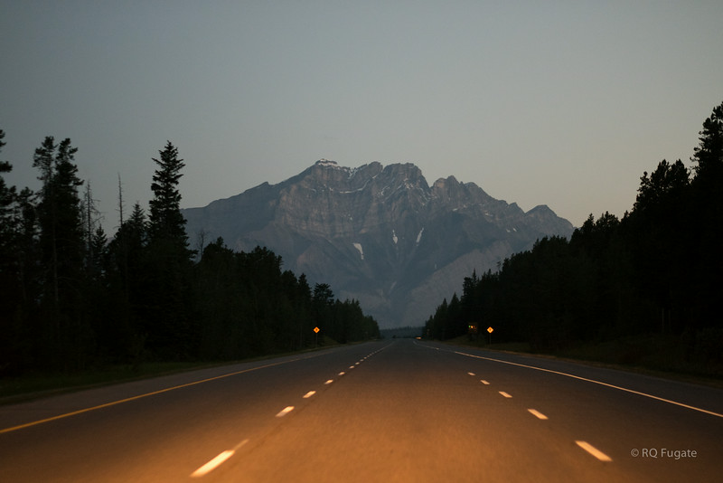On our last morning in Canmore we got up before dawn and drove to Vermillion lakes near Banff to watch for wildlife.