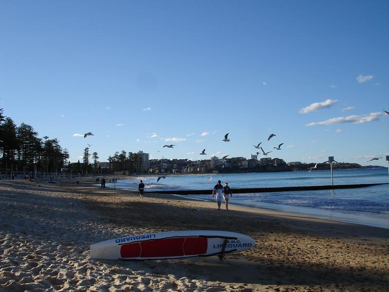 gorrez surfboard-5.jpg