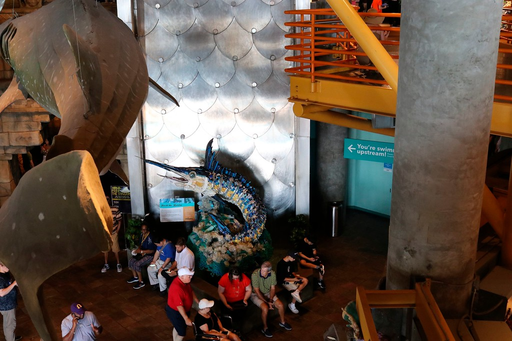 ". In this photo taken July 26, 2018, ""Flash the Marlin\"" appears to leap in a fountain in the lobby of the Audubon Aquarium of the Americas in New Orleans. It is among six huge sea-life sculptures made out of ocean trash that are part of a project called \""Washed Ashore: Art to Save the Sea.\"" (AP Photo/Janet McConnaughey)"